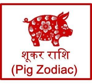 चाइनीज़ शूकर राशिफल 2016 Pig Prediction Horoscope upcharnuskhe