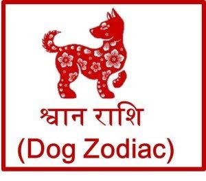 चाइनीज़ श्वान राशि 2016 (Dog Chinese Zodiac Prediction)