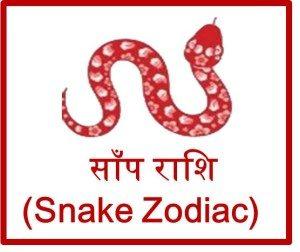 चाइनीज़ साँप राशि 2016 (Snake Chinese Zodiac Prediction) upcharnuskhe