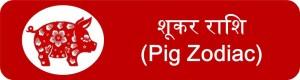 12 Pig zodiac upcharnuskhe