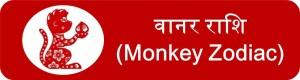 9 Monkey zodiac upcharnuskhe