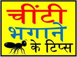 चीटियों को दूर भगाने तथा छुटकारा पाने के उपाय upcharnuskhe
