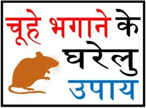चूहों को घर से भगाने के कुछ घरेलु उपाय upcharnuskhe