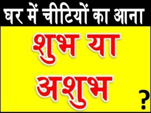 घर में चीटियों का आना- shubh ashubh
