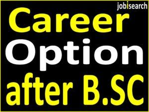 Best Career Option after B.SC