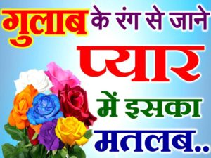 गुलाब के रंग से जाने प्यार में इसका मतलब Rose Color Meanings