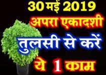 अपरा एकादशी व्रत तिथि शुभ मुहूर्त Apara Ekadashi Vrat 2019