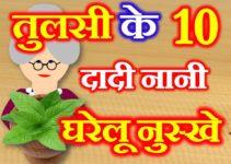 तुलसी के 10 घरेलु उपाय 10 Home Remedies of Basil Leaf