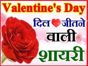 वैलेंटाइन डे शायरी 2020 Valentine Day Week Status Shayari 2020