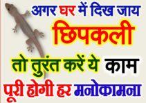 घर में दिख जाय छिपकली तुरंत करें ये काम Lizard Vastu Tips for Prosperity