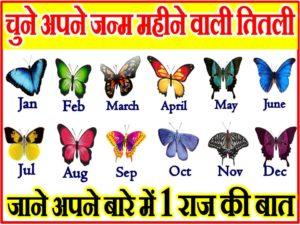 चुने अपने जन्म महीने वाले तितली और जाने अपने राज की बात Personality Test