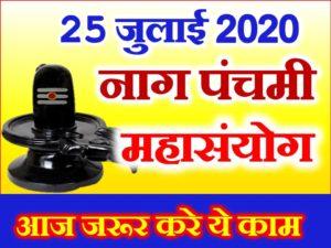 नागपंचमी 2020