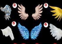 चुने कोई एक पंख और जाने अपने दिल के गहरे राज Personality Test