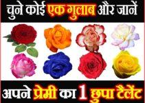चुने कोई 1 गुलाब और जाने प्रेमी का छिपा टैलेंट Personality Test by Favorite Heart