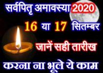 सर्वपितृ अमावस्या 2020 Ashwin Pitra Paksh Amavasya Date Time 2020