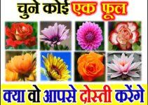 चुने कोई एक फूल क्या वो आपसे दोस्ती करेंगे Love Quiz by Favourite Flower