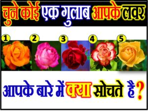 Love Quiz Game by Favourite Rose