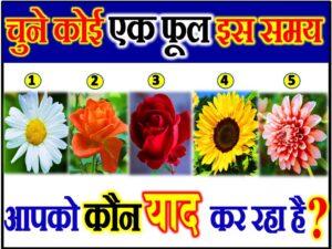 Flower Love Quiz Game