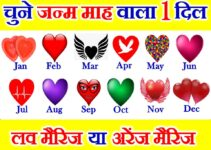 जन्म माह से जानें लव मैरिज या अरेंज मैरिज Love Marriage Arrange Marriage by Birthday Month