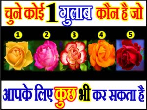 Rose Love Quiz Game