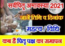 Sarva Pitru Amavasya 2021 Date जानिए कब है पितृ पक्ष श्राद्ध पक्ष का समापन